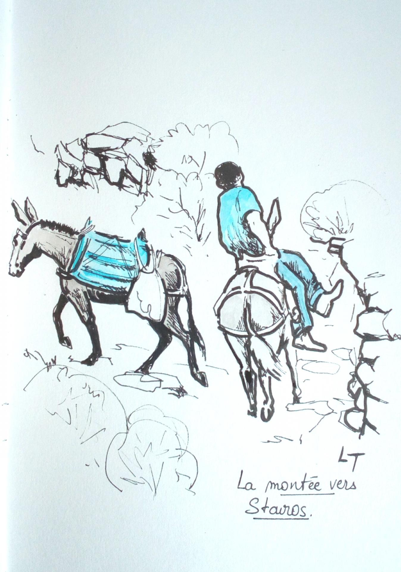 Amorgos, montée vers Stavros