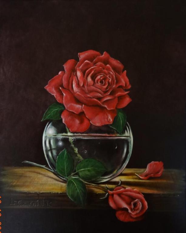 Une Rose Pour Une Rose